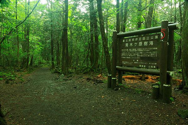 Akigahara 2