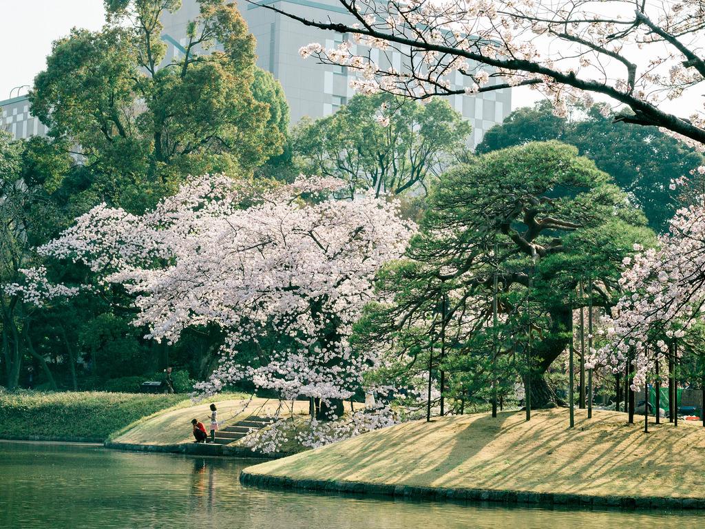 Koishikawa Korakuen 4