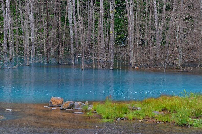 blue pond 2