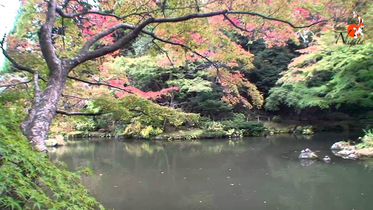 Naritasan Shinshoji 4