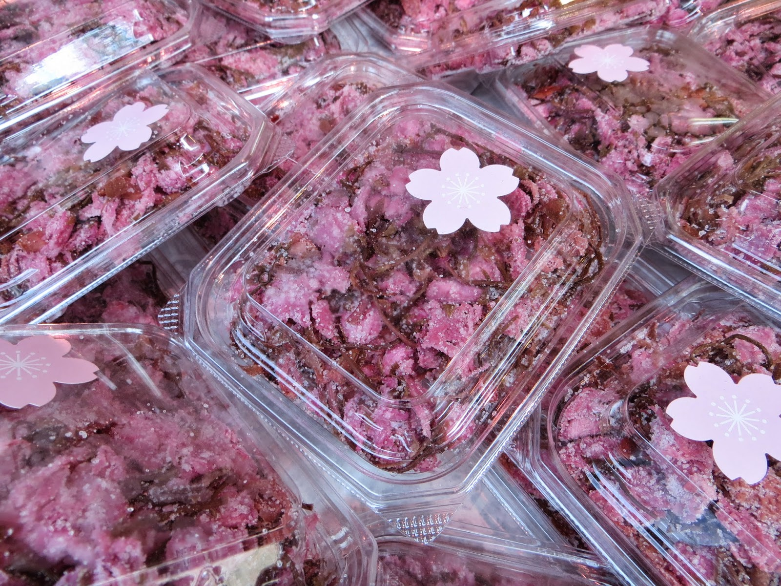 Sakura no Shiodzuke