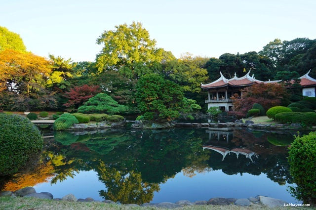 Shinjuku Gyoen traditional Japanese garden
