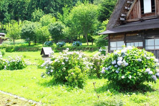 lang Shirakawa 1