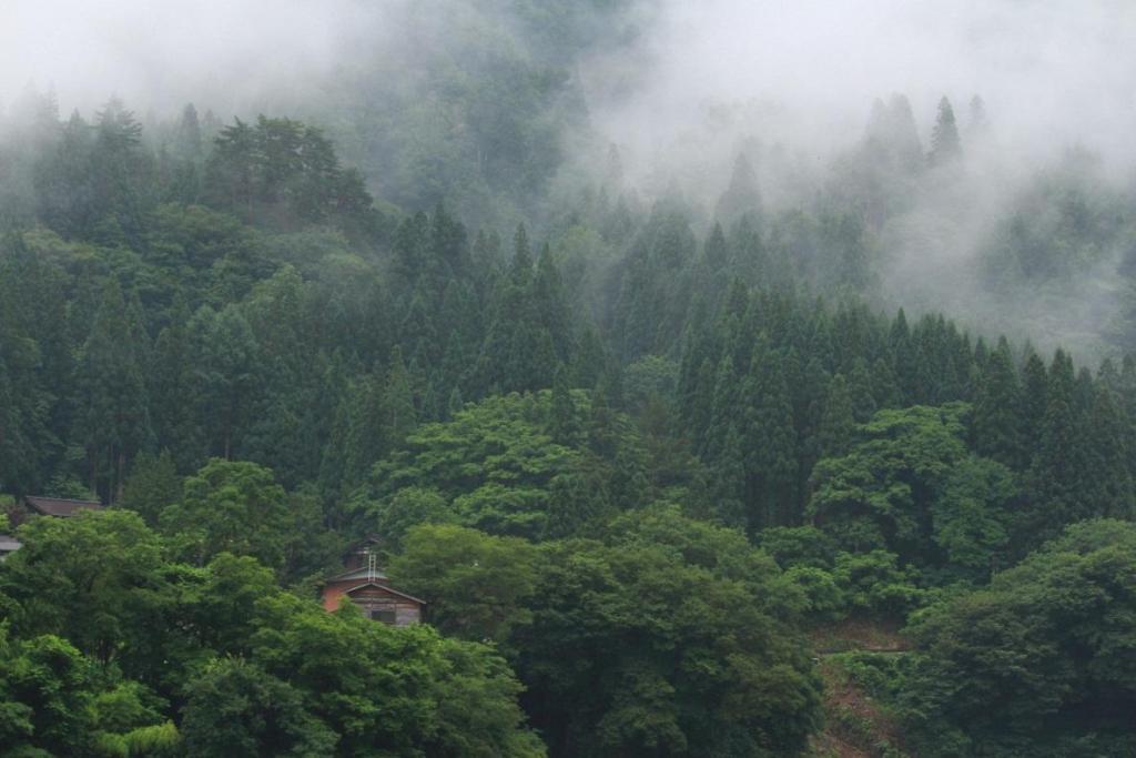 lang Shirakawa 3