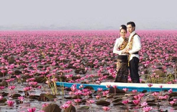 Talay Bua Daeng 5